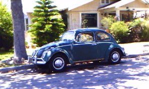 beetle_on_the_street
